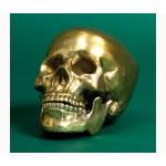 SKULL HEAD IN ALUMINIUM 'DIESEL-HUMAN SKULL' Cm.13x20 h.15